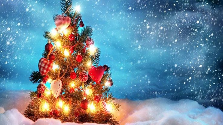 WHAT YOU MUST DO FOR A PERFECT CHRISTMAS CELEBRATION